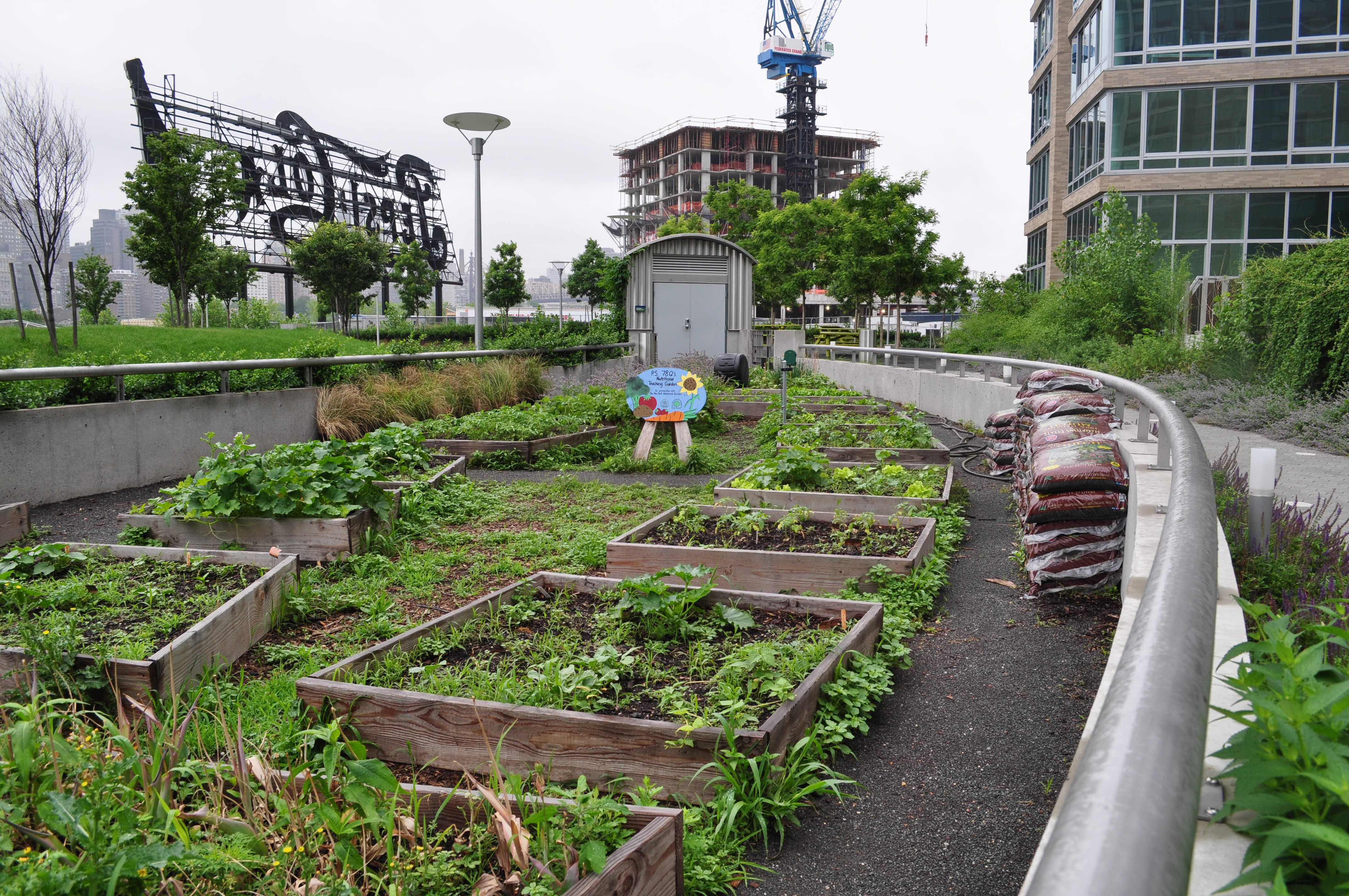 Urban Agriculture Cultivating Healthy Places